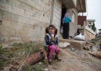Половина погибших на войнах за последние годы – мирные жители