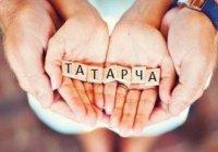 Ассоциацию учителей татарского языка хотят создать в Татарстане