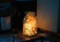 В Челнах состоится «Ночь науки»