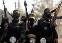 СМИ: ИГИЛ обзавелось новой «столицей» в Сирии