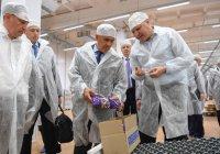 Набережные Челны станут кондитерской столицей Татарстана