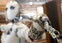 В Иннополисе начались сборы по олимпиадной робототехнике