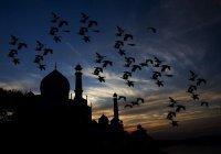 Все о Ночи Предопределения: история, особенности и поклонение