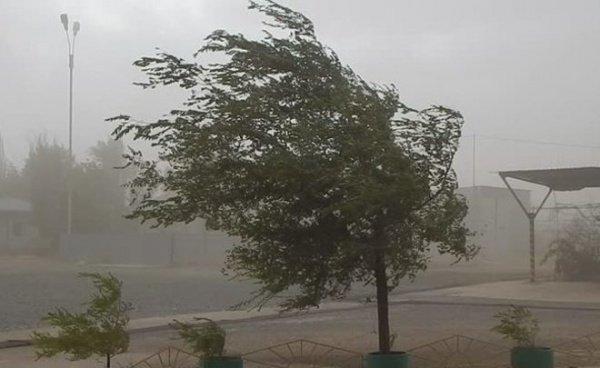 В эти 2 дня в республике ожидаются грозы с усилениями ветра порывами до 15—20 м/с