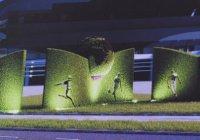 Новая футбольная стена из цветов появится в Казани