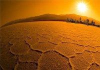 Ученые: От аномальной жары к 2100 году будут страдать 74% населения Земли