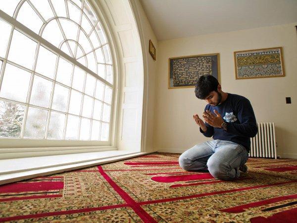 Наличие или отсутствие обрезания не имеет никакого значения в исламе и с точки зрения выполнения поклонений.
