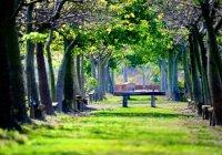 Тетюши и Нурлат включили в топ-10 самых чистых сел и малых городов России