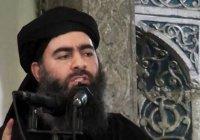 Эксперты назвали имя преемника аль-Багдади