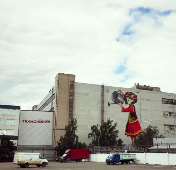 Стену одного из цехов бывшего предприятия «Тасма» украсил рисунок местного стрит-арт художника