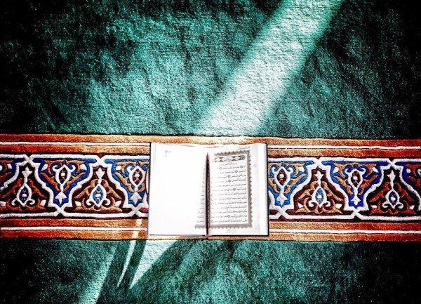 Просите, о рабы Аллаха, своего Господа обо всех своих нуждах