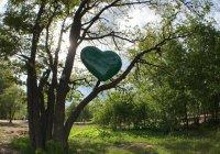В Горкинско-Ометьевском лесу состоится фестиваль красок холи