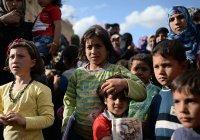 Почти полмиллиона сирийских беженцев вернулись в свои дома