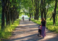 Иранский город благоустроит один из парков Казани