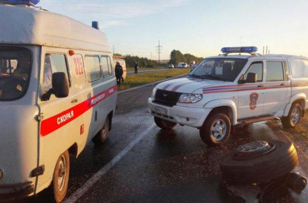 Авария с участием «КАМАЗа» и автобуса Neoplan произошла ночью в воскресенье