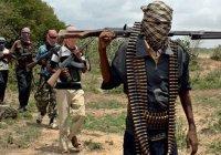 Армия: «Боко Харам» проиграла войну в Нигерии