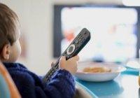 В Казани представили концепцию татарского детского телеканала