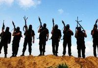 Эксперт: ИГИЛ и «Аль-Каида» могут объединиться в одну группировку
