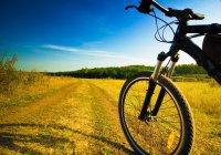 За 2 недели велотуристы из Татарстана преодолеют больше 1 000 км