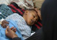 СМИ: боевики наживаются на эпидемии холеры в Йемене