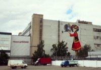 Казанцы выбирают имя для нарисованной татарки