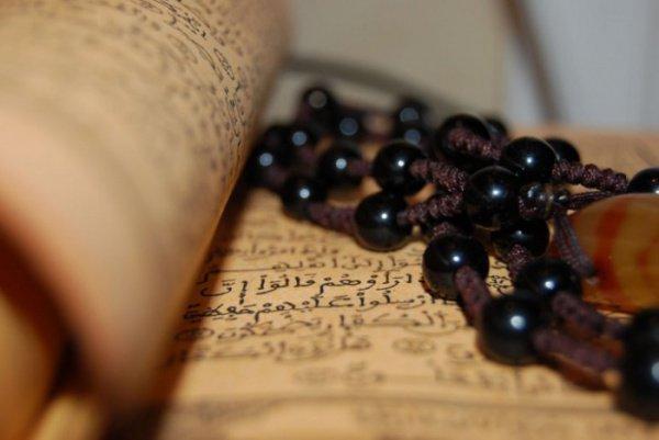«Аллах (…) ведет прямым путем тех, кто обратился к Нему с покаянием»