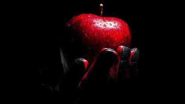 «Давай же отведаем этот плод..»