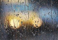 Фото затопленных улиц Казани назвали подделкой