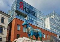КФУ вошел в топ-5 популярных вузов РФ по версии «Яндекса»