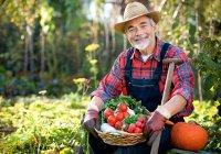 Начинающих фермеров в Татарстане поддержат грантами на 140 млн рублей