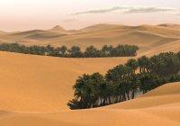 Откуда Адам знал о пророке Мухаммаде (мир ему)?
