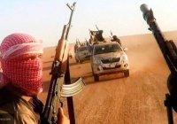 Стало известно, сколько зарабатывают рядовые боевики ИГИЛ
