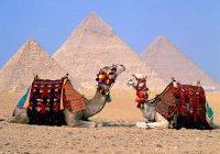 Немецкие туристы возвращаются в Египет