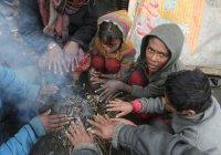 Около $500 млн Всемирный банк выделил Афганистану на борьбу с бедностью