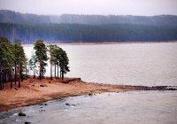На берегу Финского залива состоится молодежный Сабантуй