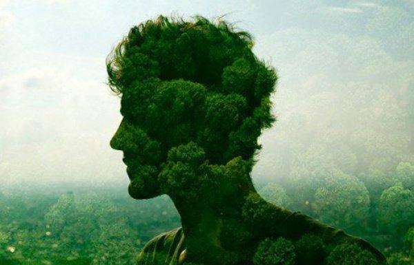 Высокий уровень природоохранной активности населения демонстрирует слаженные действия СМИ, власти и общества