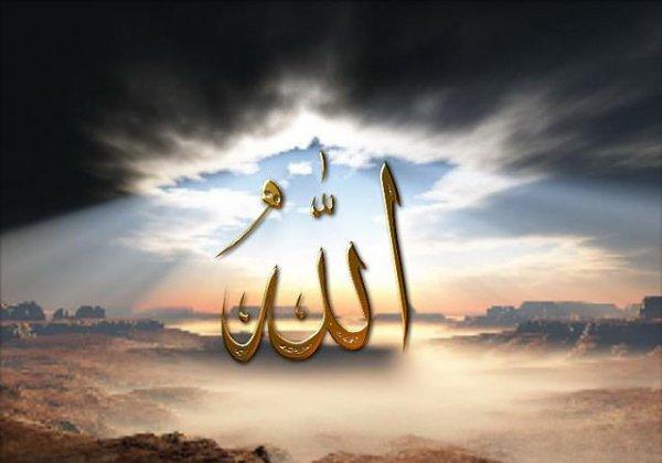 Аллах является единственным Создателем и хозяином всего созданного