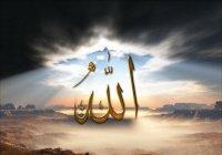 Почему Аллах создает умственно неполноценных людей?