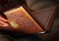 Мнение эксперта: как  готовить  татарских  хафизов?