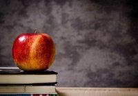 7,7 тыс выпускников в Татарстане получили высокие баллы по ЕГЭ