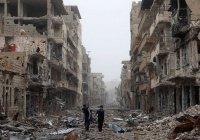 В Сирии запретили собак