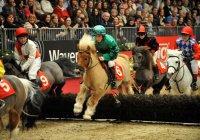 В Альметьевске пройдут скачки для пони