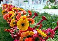 В Челнах фестиваль цветов перенесли на новое место