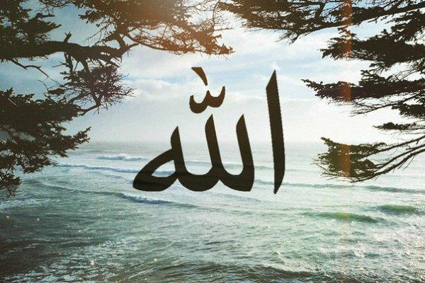 Аллах Всевышний не является нуждающимся в чем-либо
