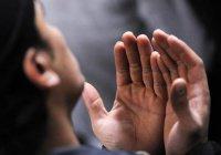 БФ «Закят» объявил о старте традиционной акции «Накорми нуждающегося»