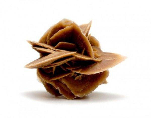 Какая она - «роза пустыни», и почему она никогда не увядает?