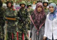 В Китае мусульманку задержали за текст Корана в телефоне