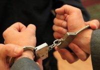 Сторонники ИГИЛ задержаны в Московской области