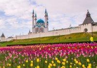 Вице-премьер России посоветовал брать пример с Татарстана