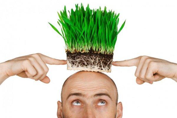 """""""..даже если речь идет о пересадке собственных волос, это считается запрещенным"""""""